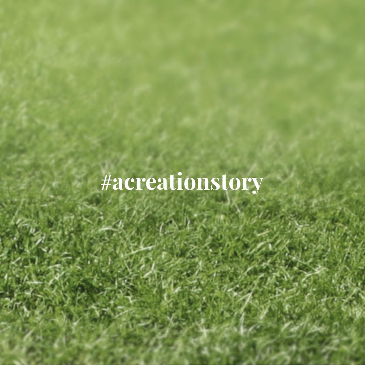 #ACreationStory