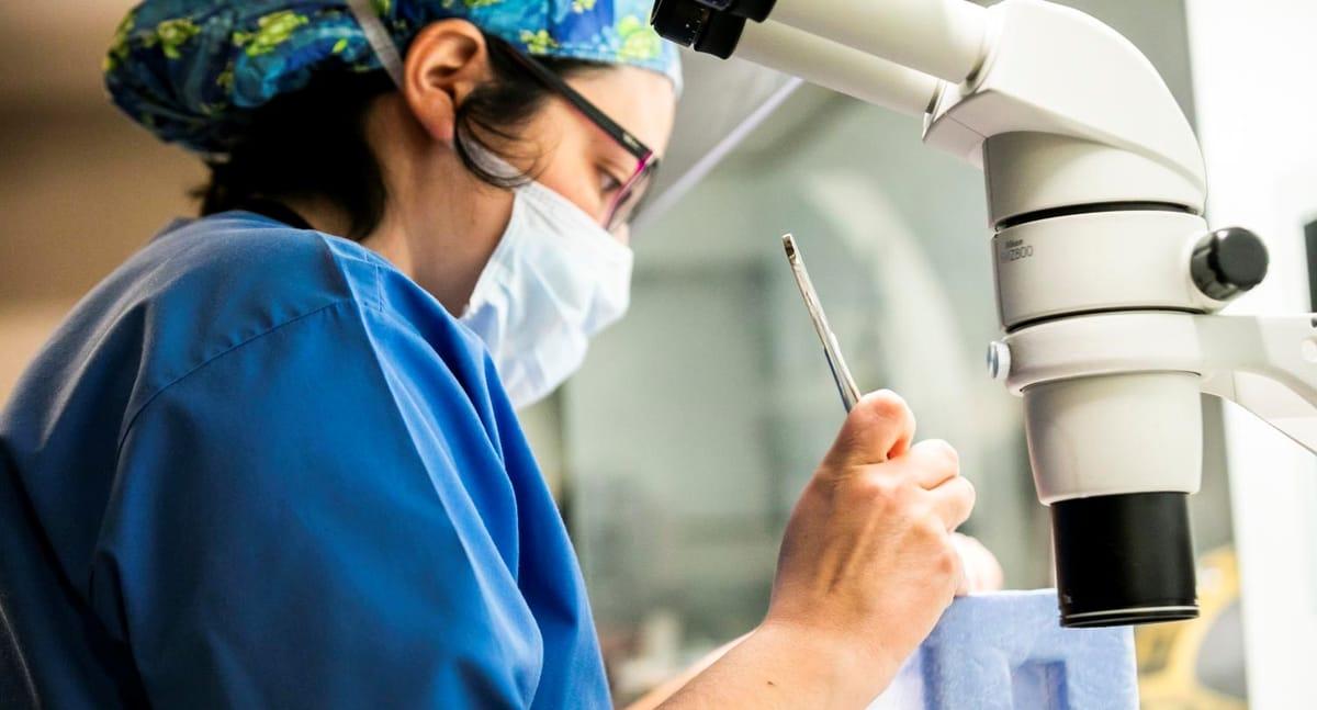 Improving preimplantation genetic testing